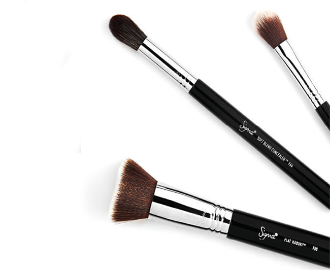 Sigma Best of Beauty Brush Set, All you need for perfect face