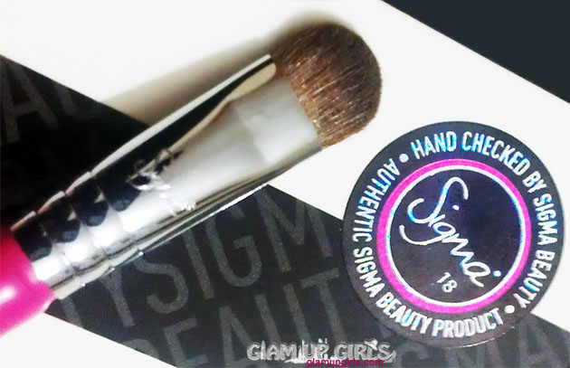 Sigma Beauty E55 Eye Shading Brush - Review
