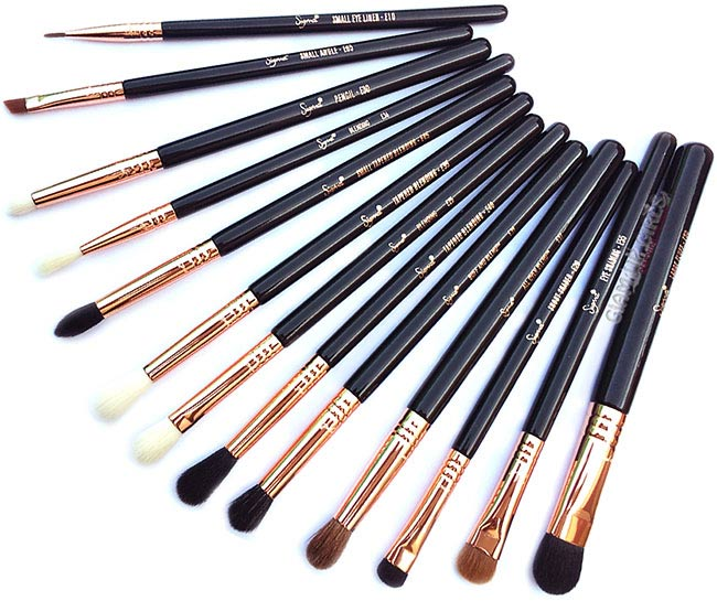 Sigma Ultimate Copper Eye Makeup Brush Set - Review